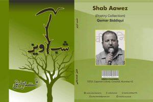 Shab Aavez