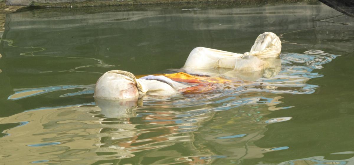 بہار میں گنگا ندی میں تیرتی لاش۔ (فوٹو: ٹوئٹر)